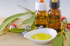 Manfaat dari minyak kayu putih